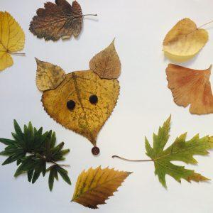 """""""Feuilles d'automne, la nature créative !""""   9 et 26 Octobre, 10h30/11h30"""